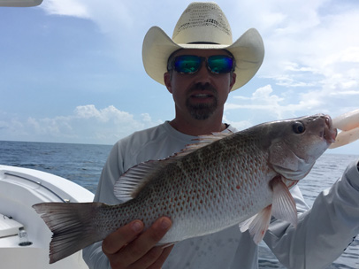 Angling Adventures Mangrove Snapper