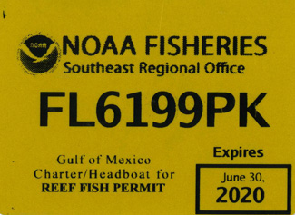 reef permit angling adventures